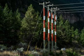 some colorful electricity poles